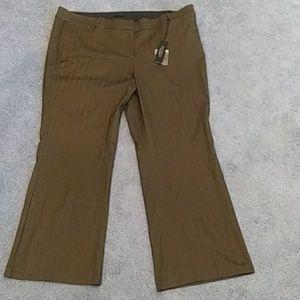 Lane Bryant Allie pants